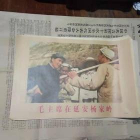 宣传画 毛主席在延安杨家岭(印刷品)