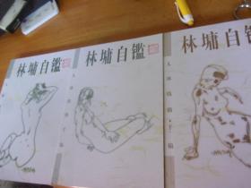 《林墉自鉴》人体线描手稿. 上中下3册