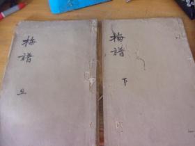 画传二集梅谱  青在堂梅谱 16开线装-卷上下2册全 ,其中下册为彩色套印的-品以图为准-有虫注