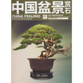 中国盆景赏石—2013中国盆景活动回顾专辑