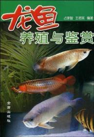 龙鱼养殖与鉴赏