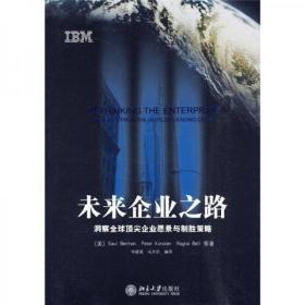 未来企业之路:洞察全球顶尖企业愿景与制胜策略