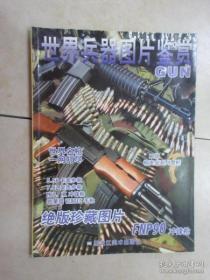 世界兵器图片鉴赏【绝版珍藏】