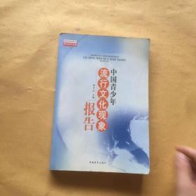 中国青少年流行文化形象报告