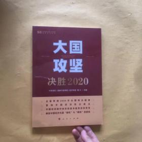 大国攻坚:决胜2020(中央党校(国家行政学院)智库系列丛书)