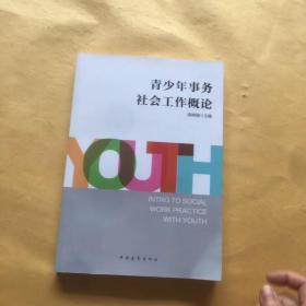 青少年事务社会工作概论