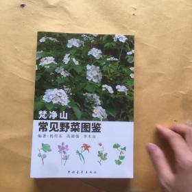 梵净山 常见野菜图鉴