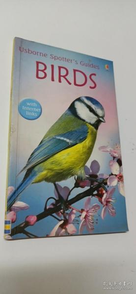 BirdsUsborne英文原版