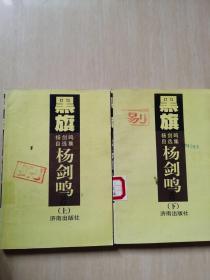 黑旗:杨剑鸣自选集(上下) 缺中册