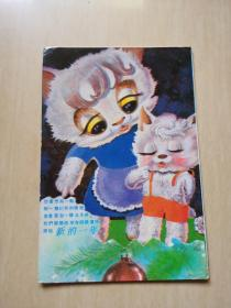 猫 明信片 一张