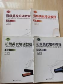 初级美发培训教程:吹风造型、染发、烫发、接待4本合售