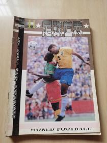 足球世界 1995年11期