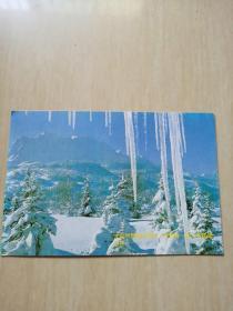 明信片 雪景1张