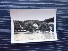 老照片17075-民国或五十年代-杭州西湖风景照-葛岭