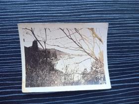 老照片17073-民国或五十年代-杭州西湖风景照-六和塔