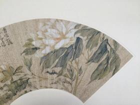 清 江介 花卉扇面