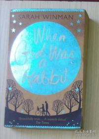 英文原版 When God Was A Rabbit by Sarah Winman 著