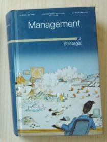意大利语原版 Management. 3 Strategia