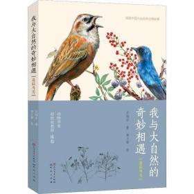 我与大自然的奇妙相遇 追踪鸟类 /关翔宇