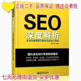 SEO深度解析-全面挖掘搜索引擎优化的核心秘密痞子瑞电子工业