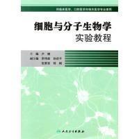 正版细胞与分子生物学实验教程(协编教材)9787117127509卢健人民卫生出版社