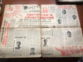 四川青年报