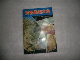 齐鲁风光大全  山东友谊出版社  AB4829