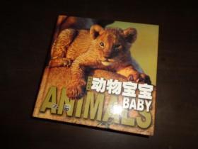 动物宝宝:地球故事 精装