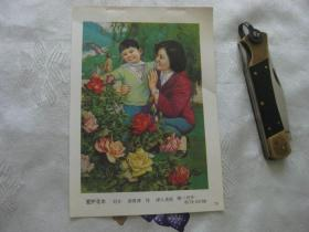 年画缩样散页: 爱护花木