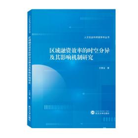 区域融资效率的时空分异及其影响机制研究 王慧龙 著  武汉大学出版社