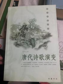 唐代诗歌演变           21
