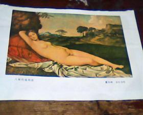 美术画页  正面入睡的维纳斯  反面  纳税金