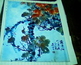 剪报画页 霜季红于二月花
