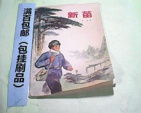 文革小说 新苗