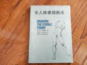 女人体素描画法