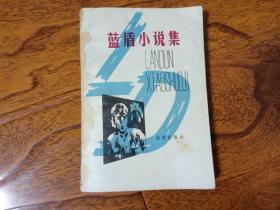 蓝盾小说集
