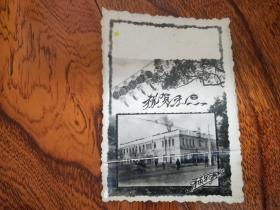老贺卡  齐市综合服务楼