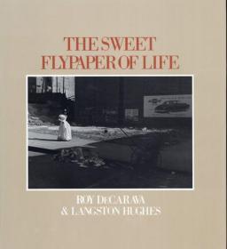 The Sweet Flypaper of Life 罗伊·德卡拉瓦 1984年  Howard Univ 英语版 写真集