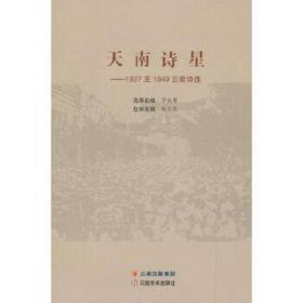 天南诗星——1937至1949云南诗选 罗铁鹰 编 9787548932130 云南美术出版社 正版图书