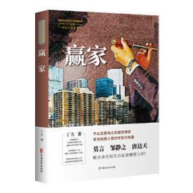 赢家(中国专业作家作品典藏文库.丁力卷)