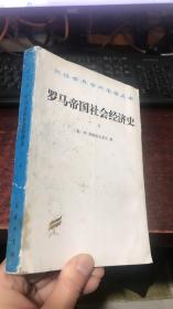 罗马帝国社会经济史(下册)