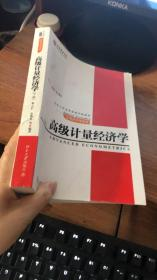 高级计量经济学(下册)
