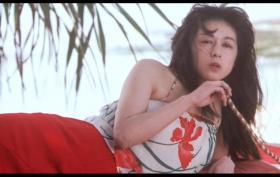 《冲绳草莽英雄》DVD(青山知可子)