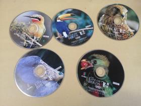 飞禽传特辑.(英国BBC)5盘  中联文化传播(集团)有限公司,裸盘 (看好再拍,售出不退不换)