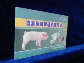 畜禽疫病病理彩色图谱