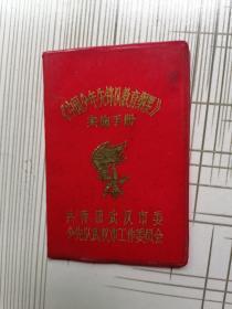 稀見==中國少年先鋒隊教育綱要實施手冊
