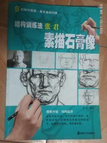 实物与画面·美术基础训练·结构训练法:张君素描石膏像