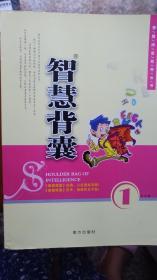 智慧背囊第1-10辑 智慧背囊系列丛书 11年版本 包平邮