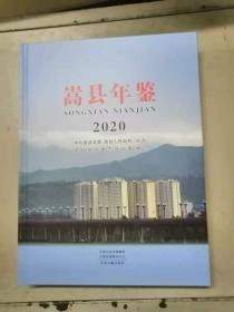 嵩县年鉴2020