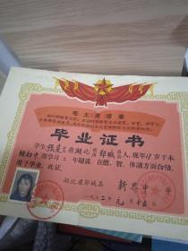 毕业证书(1972年)